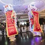 Image Chinese Dragon at Sydney Wedding