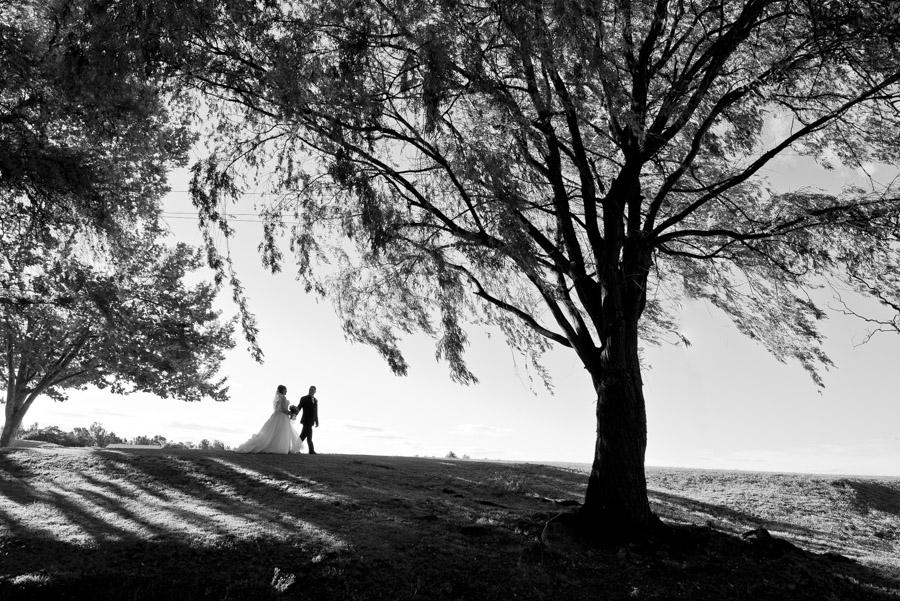 Sebel Hawkesbury Valley Wedding Photography