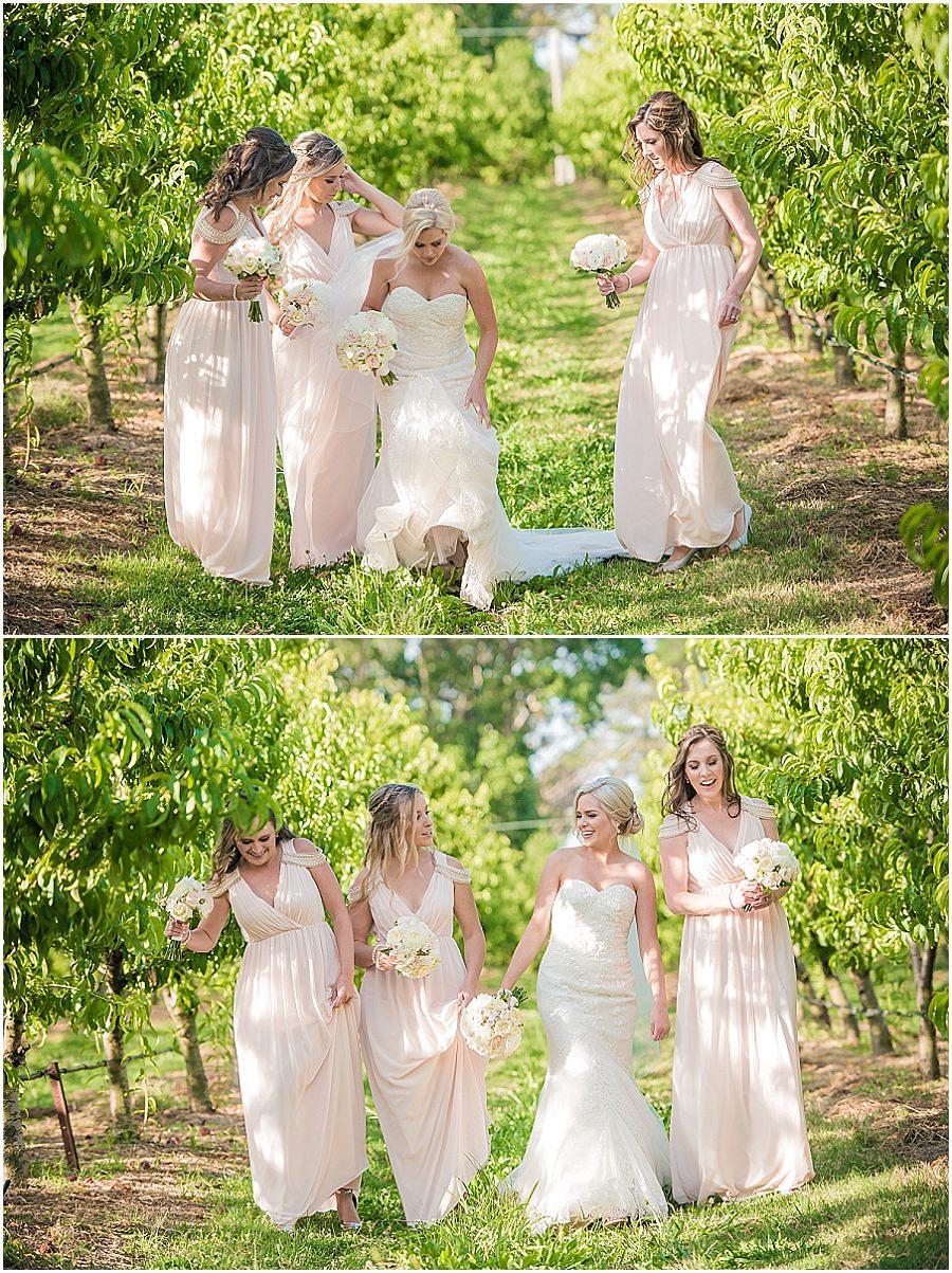 37-panorama-house-appleshack-orchard-wedding-photos