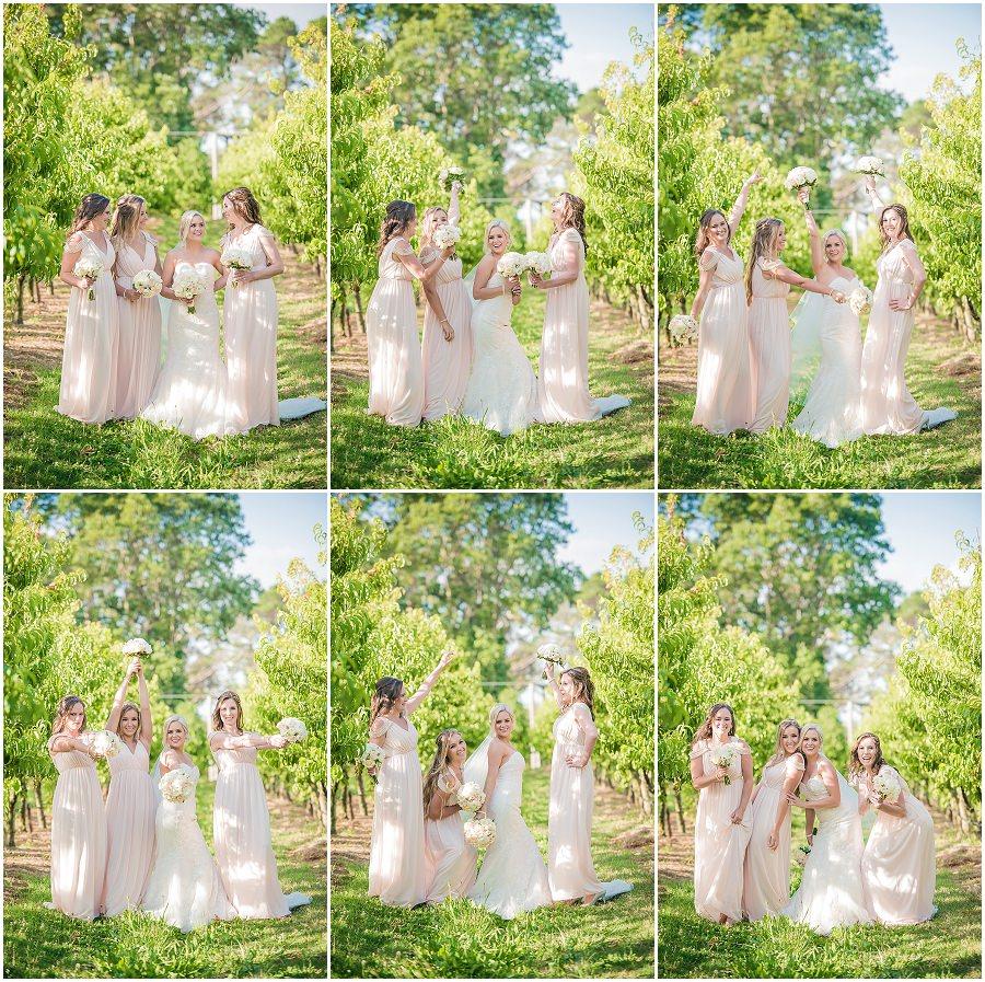 38-panorama-house-appleshack-orchard-wedding-photos