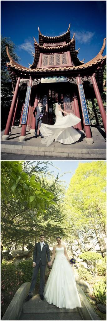015 chinese gardens sydney photography